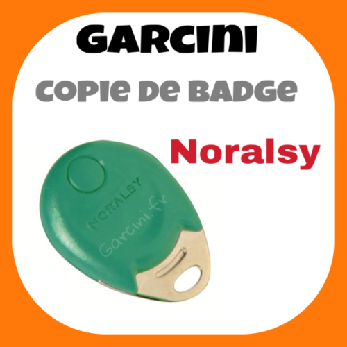 Badge Noralsy vert
