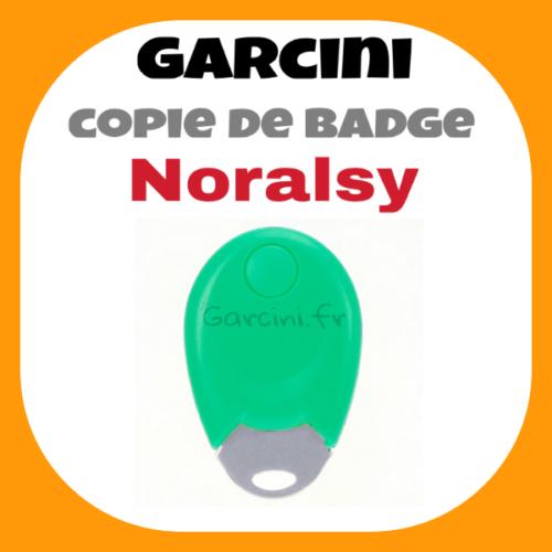 Badge Noralsy vert ancien model