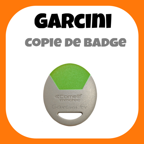 Badge Immotec Comelit vert
